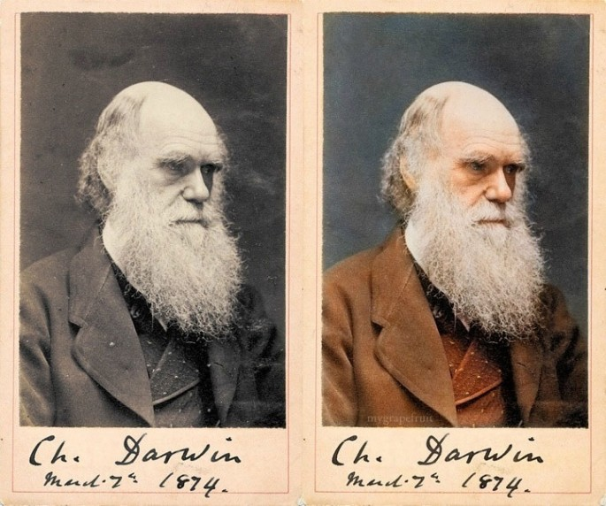 Charles Darwin - Fotografía por Sanna Dullaway